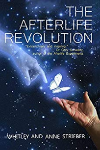 Book Cover: The Afterlife Revolution