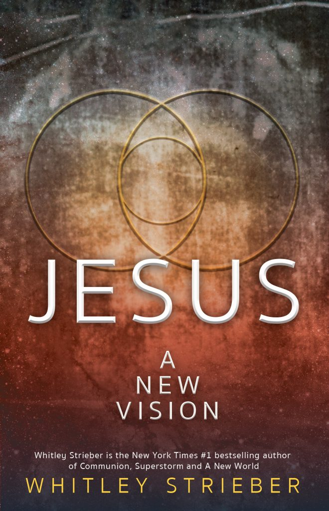 Book Cover: Jesus: A New Vision